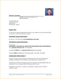 Example Resume For Job Application Employment Sample Format Peppapp