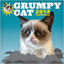 unusual gifts for cat lovers. Exellent Gifts Grumpy Cat 2014 Wall Calendar For Unusual Gifts Lovers