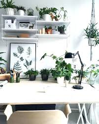 Office cubicle decorating ideas Workspace Modern Cubicle Decor Cubicle Decor Ideas Modern Office Cubicle Decor Thesynergistsorg Modern Cubicle Decor Cubicle Decor Ideas Modern Office Cubicle Decor