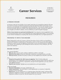 Resume Executive Summary Examples Professional Executive Summary For