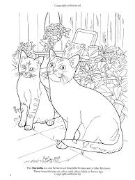 Small Picture 69 best Cat Coloring Pages images on Pinterest Coloring books