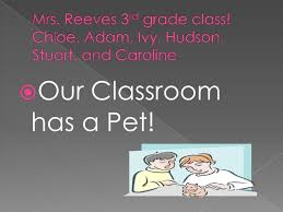 Our Pet Unit Powerpoint