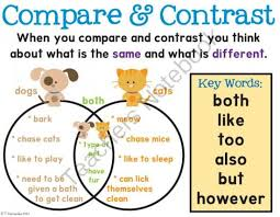best compare and contrast images teaching ideas compare contrast poster from first grade is sweet on teachersnotebook com