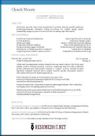 Create Professional Cv Writing Template Resume Clear Create Photo Professional Cv