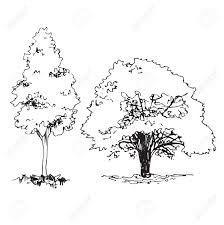 Template Tree Set Of Hand Drawn Architect Trees Tree Silhouette Dendrology
