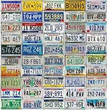 50 states license plates ebay license plate wall art himalayantrexplorers  on license plate wall art all 50 states with license plate wall decor o2 pilates