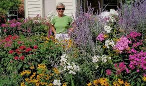 perennial flower seeds l z
