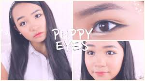 puppy eyes makeup tutorial 강아지눈 메이크업