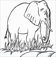 Baby Elephant Template Baby Elephants Coloring Pages Printable For Kids With Elephant