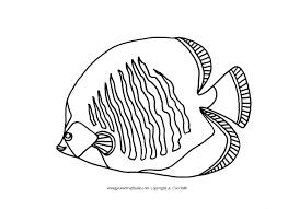 Pesce Farfalla Da Colorare Pesci E Animali Acquatici Da Colorare Con