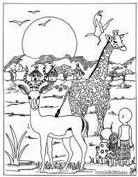 Animali Savana Africana Cerca Con Google Animali Vari Animali