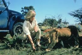 Image result for Born Free (1966)