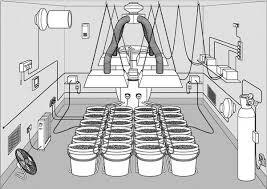 Marijuana Grow Room Httpwwwgrowingmarijuanaebookcom  Making Perfect Grow Room Design