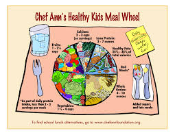 chef ann foundation parent advocacy toolkit  file