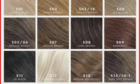 Prototypic Colour Shades For Hair Chart Hair Color Shades