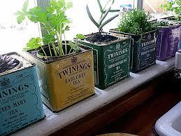indoor apartment gardening. Brilliant Apartment Indoor Rock Garden Ideas Apartment Gardening For G