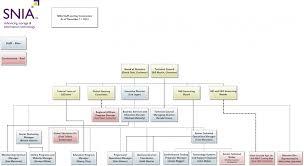 Staff Organization Chart Snia