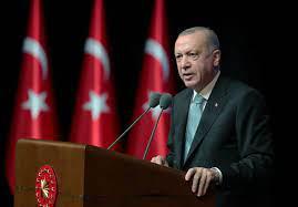 """أردوغان يدعو إلى عدم استغلال حرائق الغابات في تركيا لـ""""تحقيق غايات سياسية""""  - RT Arabic"""