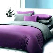 pink and purple bedding sets queen comforter engaging king home improvement delightful full bed size royal