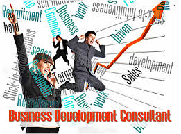 wanted business development consultant for africa payroll solutions business development consultant
