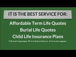 20 Year Term Life Insurance Quotes Extraordinary 48 Year Term Life Insurance Quote In Michigan Request A Quote