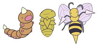 Pokemon Beedrill Evolution Chart Evolve Kakuna Evolve