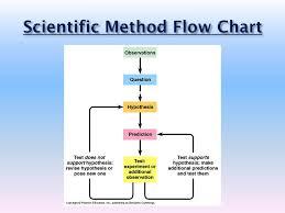 Flow Chart Showing Scientific Method Ppt Scientific Method Powerpoint Presentation Free