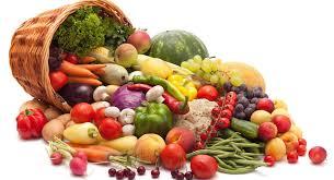 Slikovni rezultat za hrana