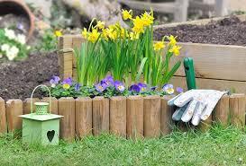 25 beautiful flower bed ideas trees