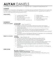 Resume Profile Section Examples Profile Section Of Resume Examples