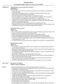 Senior Risk Analyst Resume Samples Velvet Jobs