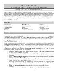 Sample Resume Real Estate Marketing Executive New Real Estate