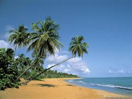 background images nature beach. Contemporary Images Deserted Beach Puerto Rico Intended Background Images Nature Beach D