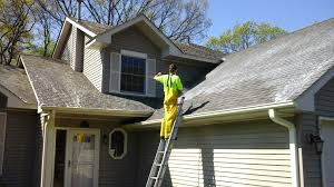 Image result for roof cleaning images