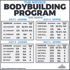 beginner bodybuilding program