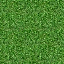 grass texture hd. (GRASS 3) Seamless Turf Lawn Green Ground Field Texture Grass Hd .