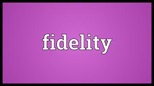 Fidelity Meaning - YouTube