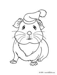Small Picture GUINEA PIG coloring pages 9 free Pets and animals coloring pages