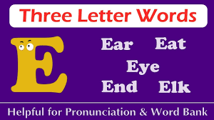 english words 3 letter words from e
