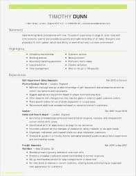 Excel Resume Examples Should I Use A Resume Template Simple Cv Templates For
