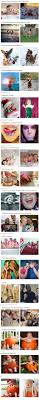 58 best images about Pinterest Gone Wrong Epic FAILS on Pinterest