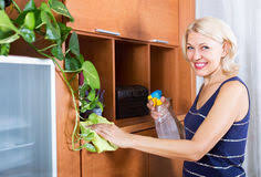 dusting furniture. smiling woman dusting wooden furniture royalty free stock photography