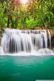 rainforest waterfall ultra hd desktop