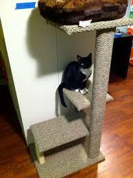 Diy cat playhouse Toy Diy Cat Tower Plans Dadandcom Learn How To Build Diy Cat Tower Cat Condo Cat Tree
