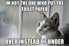 Image result for cat toilet paper meme
