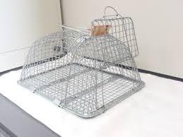 「ネズミ捕りかご」の画像検索結果