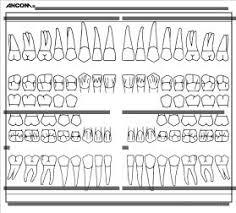 Dental Chart Forms Sada Margarethaydon Com