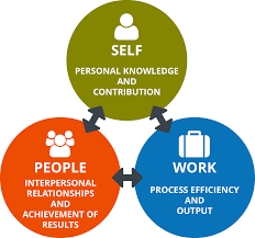 soft skills ability perform reg  three key performance areas