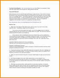 Business Analyst Resume Summary New Resume Business Analyst