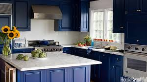 Blue Painted Kitchen Cabinet Captivating Blue Kitchen Cabinets